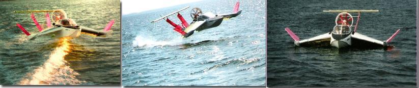 airfish.JPG